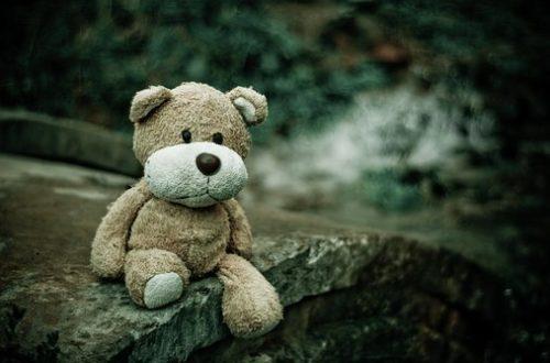 Article : «On ne fait pas des enfants pour les voir mourir»